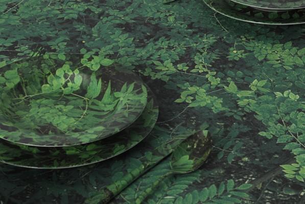 forestisch detail bearbeitet_web