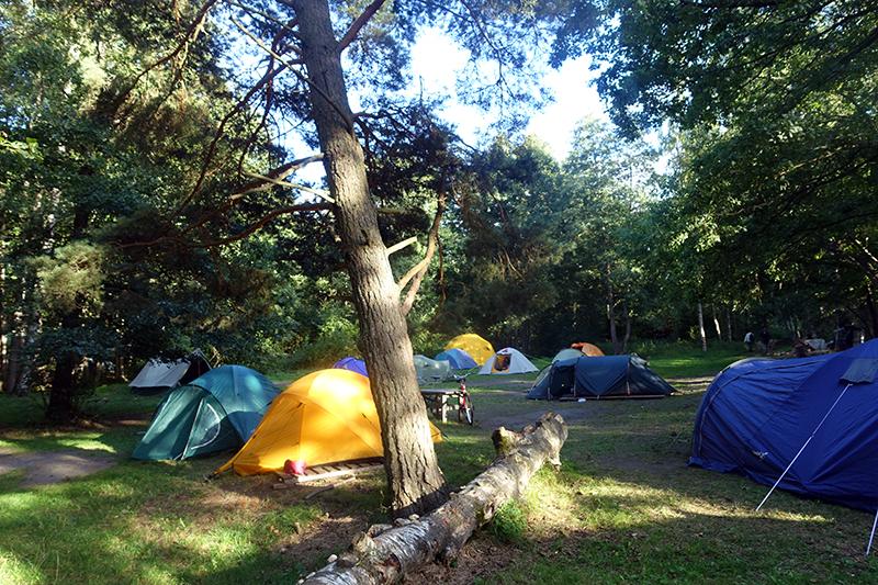 camp_web