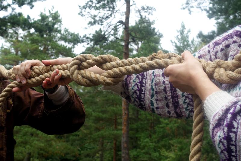 knots_web